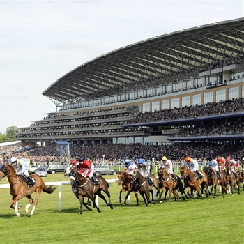 Royal Ascot For Ladies Day